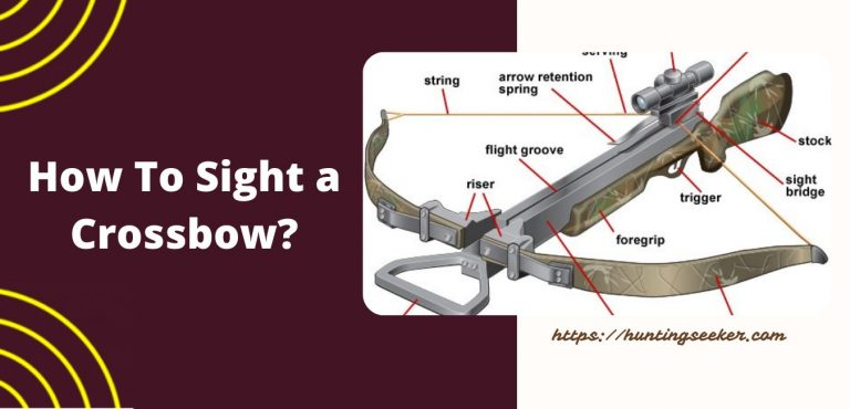 How To Sight a Crossbow?