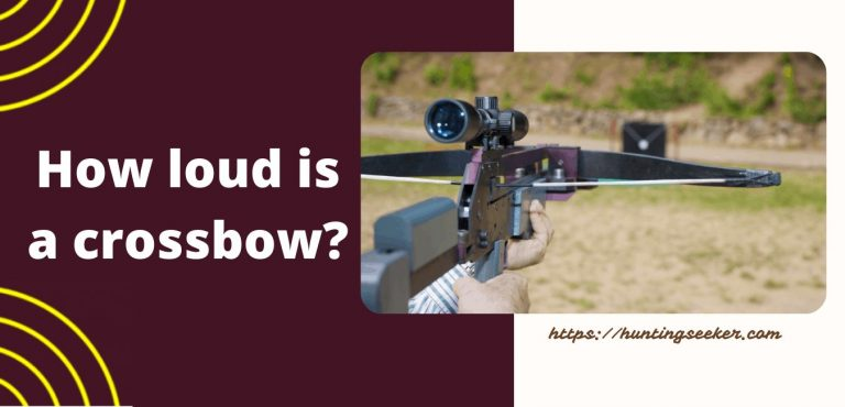 How loud is a crossbow?