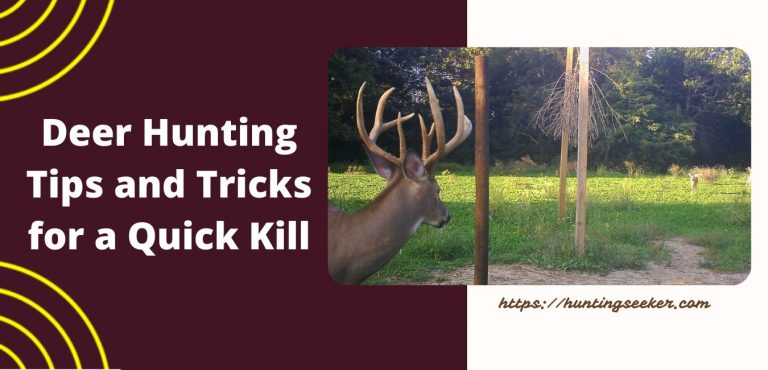 Deer Hunting Tips and Tricks for a Quick Kill